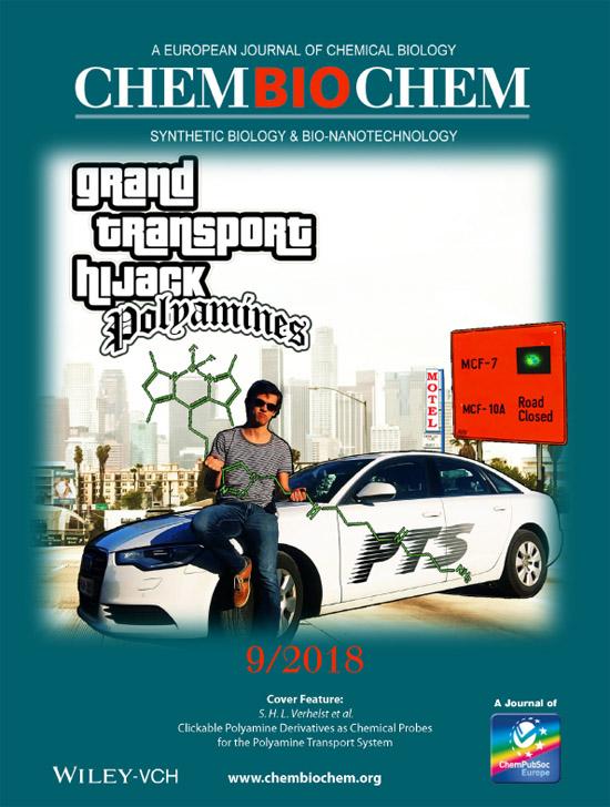 ChemBioChem2018-cover