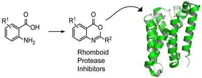 New rhomboid inhibitors